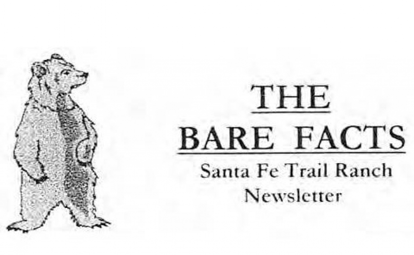 Bare Facts logo